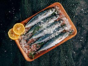 vis & zeevruchten - Ibiza